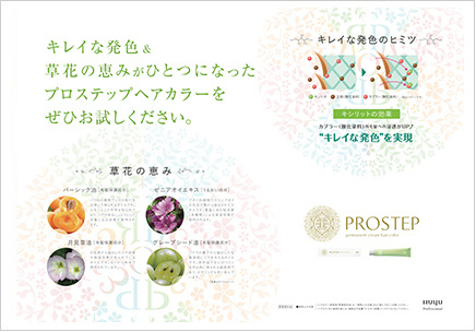 PROSTEP permanent cream hair color